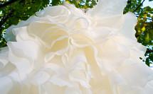 платье вид снизу сборы невесты